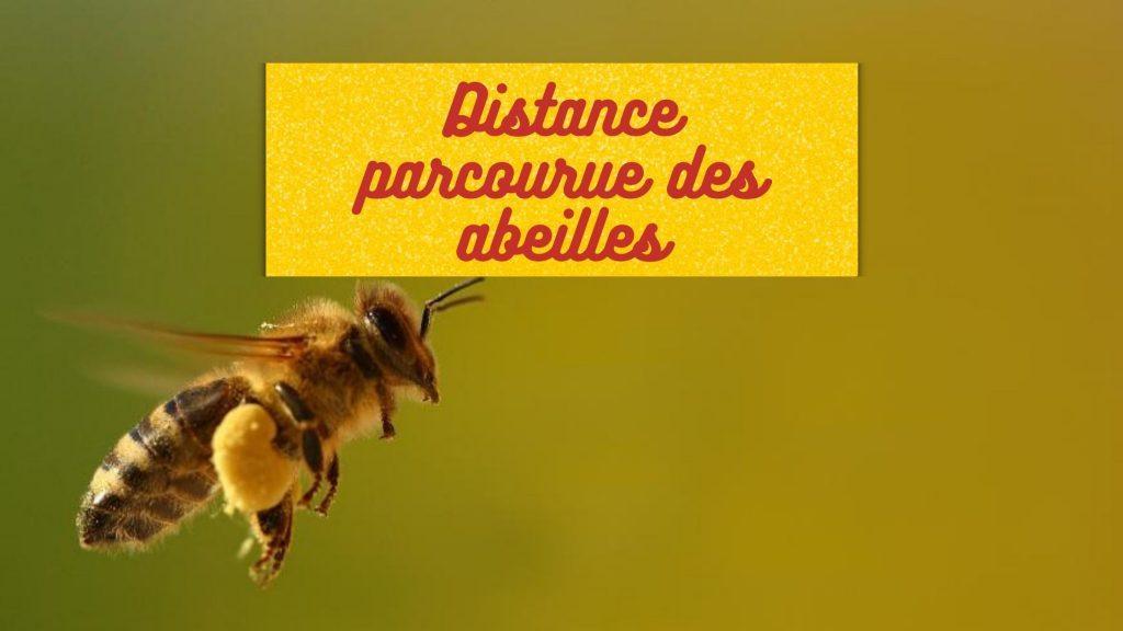 distance parcourue des abeilles